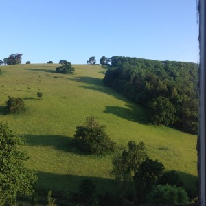 view from sharpham